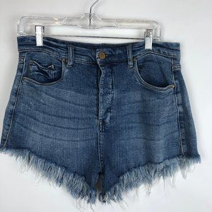 BlankNYC High Rise Distressed Denim Shorts 30